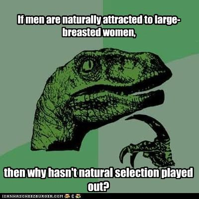 If men are naturally attracted to large-breasted women, then why hasn't natural selection played out?