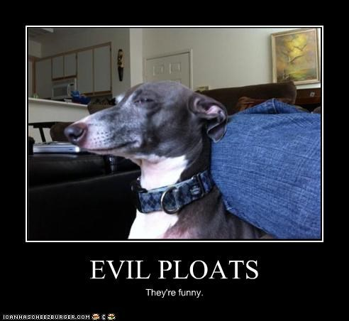 EVIL PLOATS They're funny.