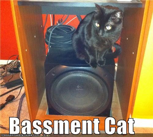 Cats bass funny puns Music speakers - 4798680320