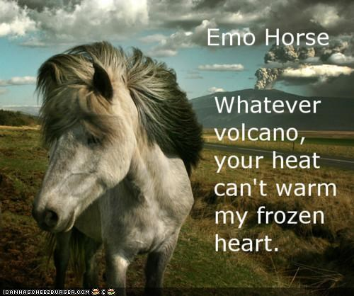 dramatic emo hearts horse Iceland news volcano - 4798742784