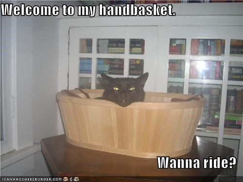 basement cat,caption,captioned,cat,handbasket,hell,offer,question,ride,want,welcome