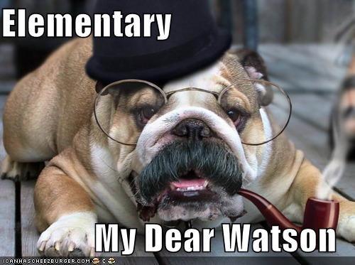 bulldog,elementary,glasses,mustache,pipe,quote,sherlock holmes,Watson