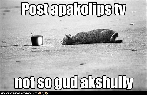 actually,apocalypse,bad,caption,captioned,cat,not so good,post,post apocalyptic,television,TV,watching