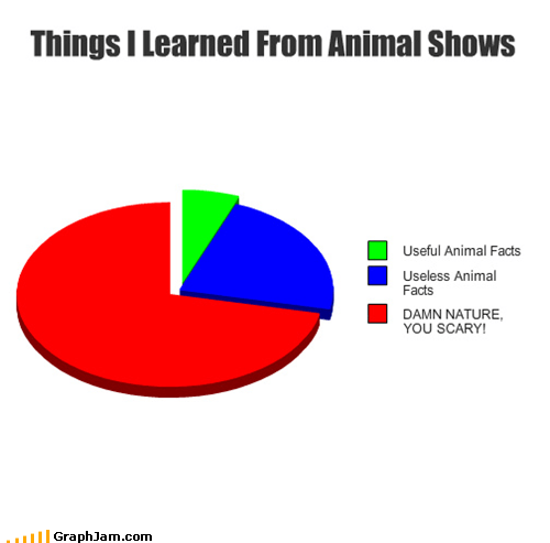 animals,nature,Pie Chart,scary