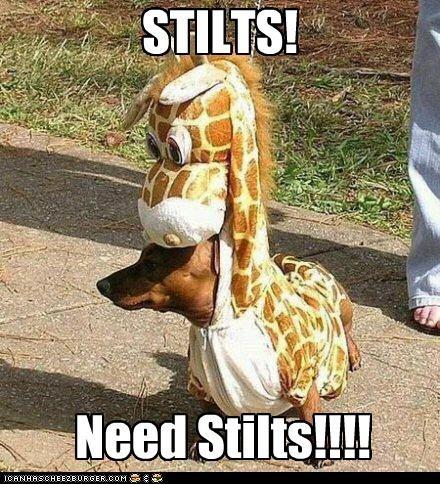 STILTS! Need Stilts!!!!