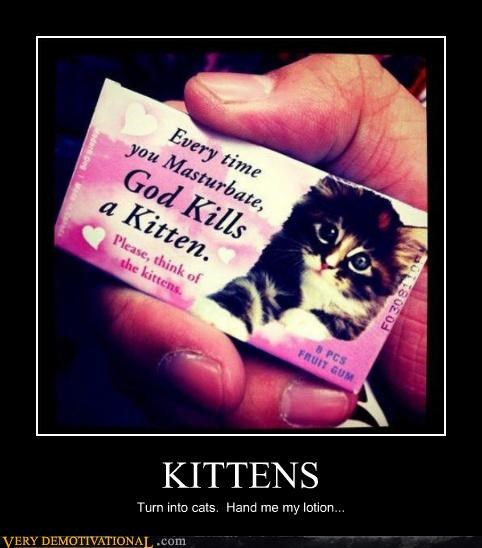 alone sexy times Cats hilarious kitten - 4801658880