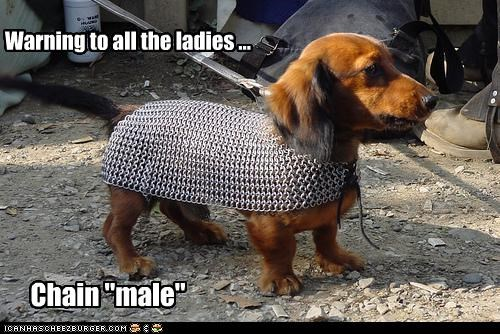 """Warning to all the ladies ... Chain """"male"""""""