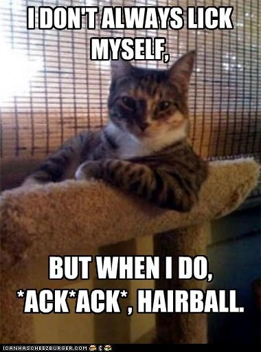 I DON'T ALWAYS LICK MYSELF, BUT WHEN I DO, *ACK*ACK*, HAIRBALL.