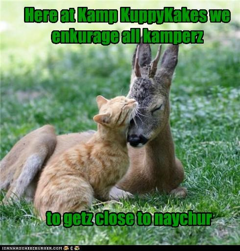 Cheezburger Image 4802709248