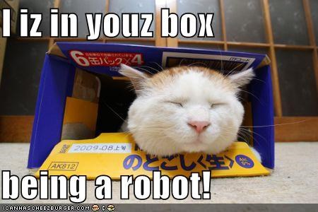 I iz in youz box  being a robot!