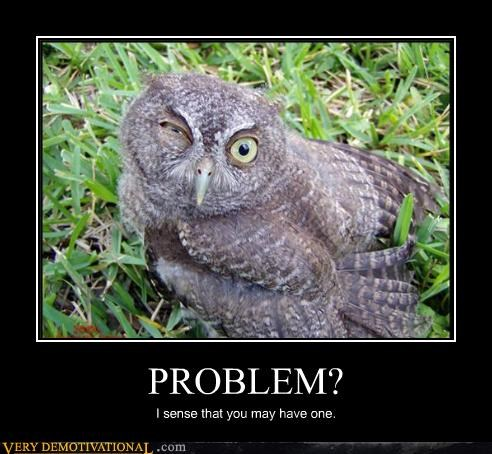 funny face Owl problem Pure Awesome - 4803135744