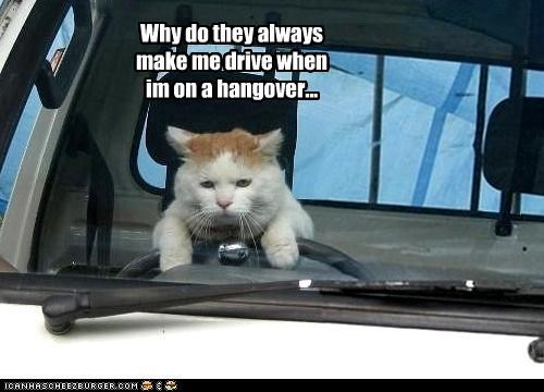Why do they always make me drive when im on a hangover...