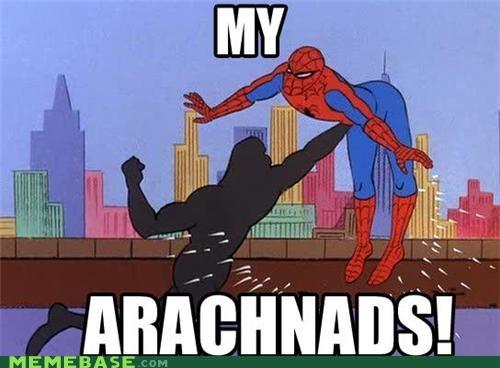 arachnid nads punch puns Spider-Man superheroes - 4803651584