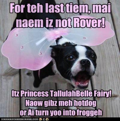 For teh last tiem, mai naem iz not Rover! Itz Princess TallulahBelle Fairy! Naow gibz meh hotdog or Ai turn yoo into froggeh