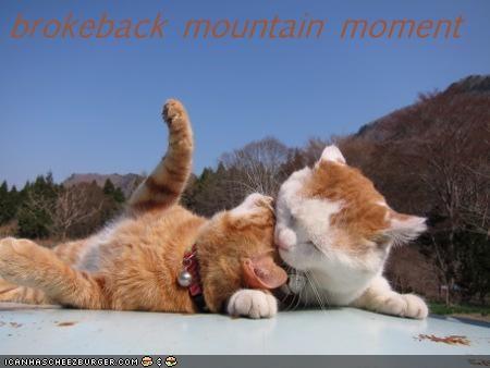 brokeback mountain moment