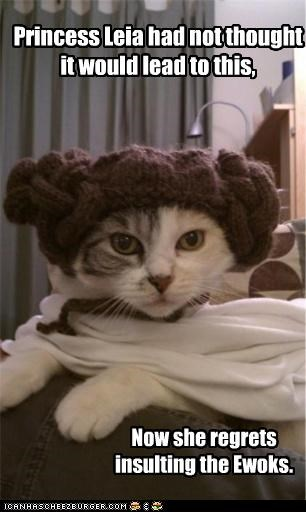 Princess Leia had not thought it would lead to this, Now she regrets insulting the Ewoks.