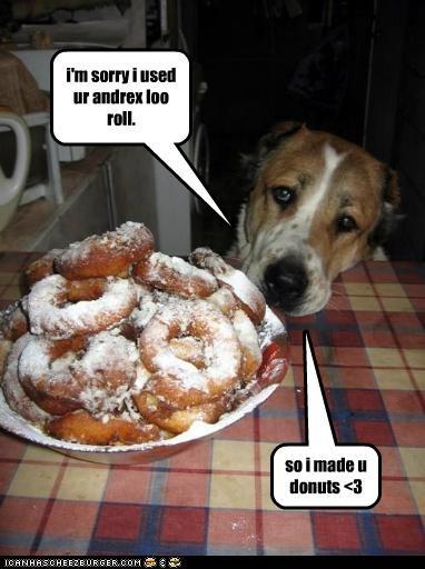 i'm sorry i used ur andrex loo roll. so i made u donuts <3