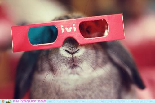 3-D 3-d glasses acting like animals Bunday bunny glasses happy bunday Movie Pirates of the Caribbean rabbit watching Watership Down wearing - 4805349120