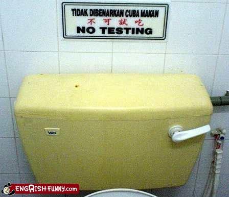 test,toilet