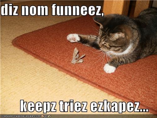 diz nom funneez,  keepz triez ezkapez...