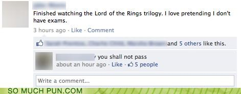 double meaning,facebook,fellowship of the rings,gandalf,Lord of the Rings,quote,status,update,you shall not pass