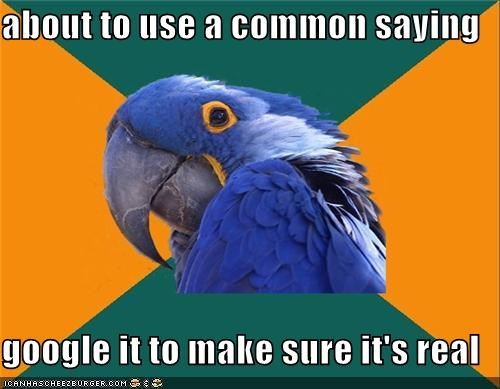 cookies crumbles google Paranoid Parrot saying search