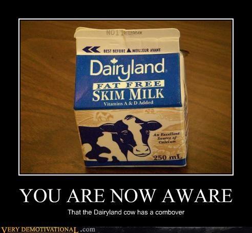 combober cow hilarious wtf - 4806429184