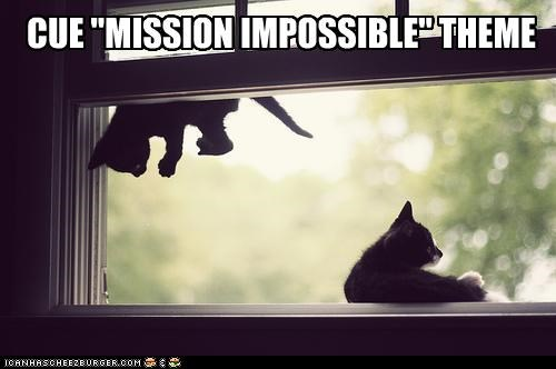 caption captioned cat Cats cue floating kitten mission impossible Music theme Theme Song - 4806914304