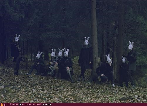 bunnies,costume,creepy,woods,wtf