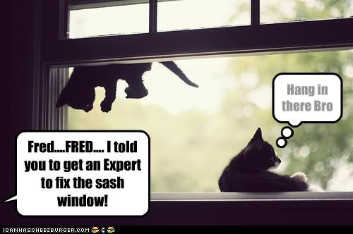 Fred....FRED.... I told you to get an Expert to fix the sash window! Hang in there Bro