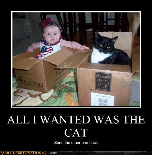baby cat do not want hilarious package wtf - 4808324352