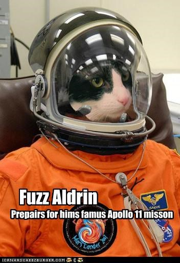 apollo 11 astronaut buzz aldrin caption captioned cat famous mission preparation prepares preparing pun space suit suit - 4809352192