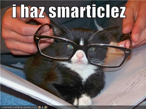 best of the week caption captioned cat glasses Hall of Fame i has kitten smart - 4809710080