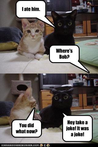 Where's Bob? I ate him. You did what now? Hey take a joke! It was a joke!