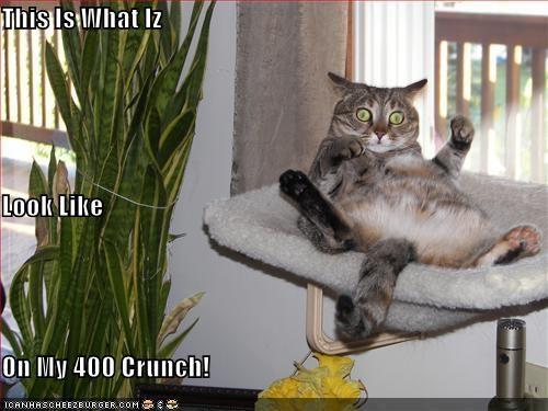 Cheezburger Image 4810224128
