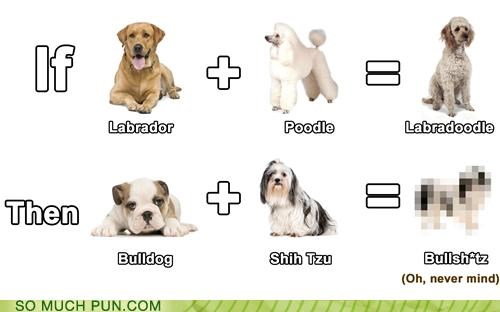 addition bulldog equation Hall of Fame labradoodle labrador math mathematics poodle portmanteau portmanteaus shih tzu sum - 4810853888