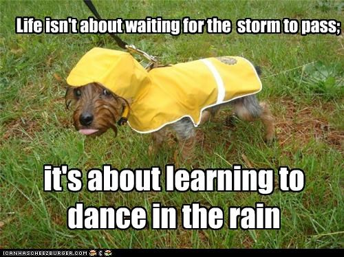 Life isn't about waiting for the storm to pass; it's about learning to dance in the rain