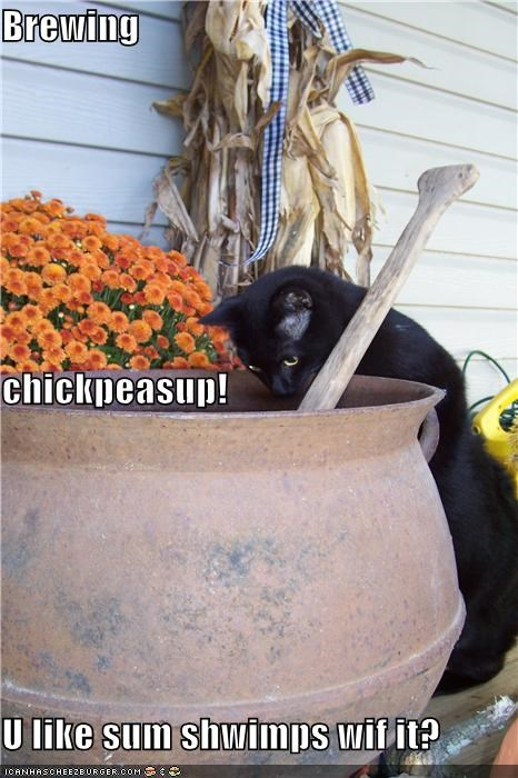 Cheezburger Image 4811945984