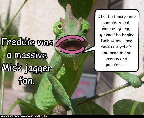( ) Freddie was a massive Mick jagger fan. Its the honky tonk cameleon gal.. Gimme, gimme, gimme the honky tonk blues... and reds and yella's and orange and greens and purples......