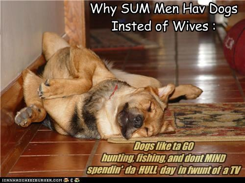 Why SUM Men Hav Dogs Insted of Wives : Dogs like ta GO hunting, fishing, and dont MIND spendin' da HULL day in fwunt of a TV
