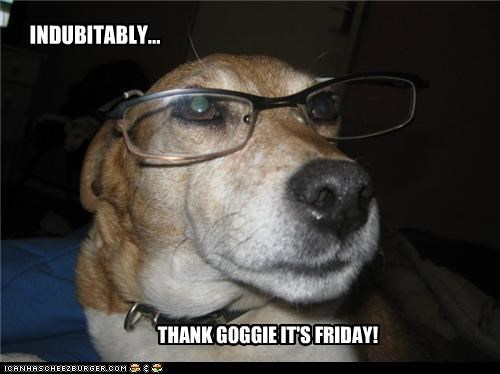 INDUBITABLY... THANK GOGGIE IT'S FRIDAY!