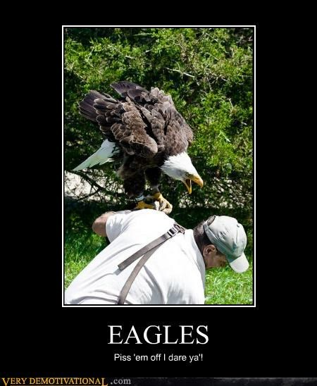 EAGLES Piss 'em off I dare ya'!