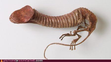 creepy dinosaur fossile man bits wtf - 4814545920