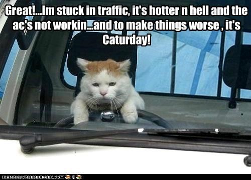 Great!...Im stuck in traffic, it's hotter n hell and the ac's not workin...and to make things worse , it's Caturday!