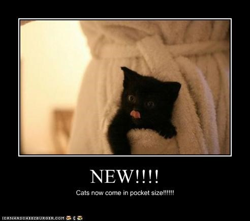NEW!!!! Cats now come in pocket size!!!!!!