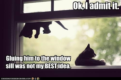 Ok, I admit it. Gluing him to the window sill was not my BEST idea.