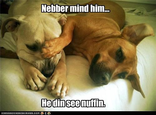 Nebber mind him... He din see nuffin.