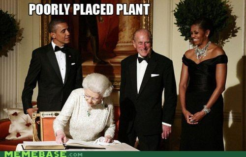 Memes,obama,oldsauce,placed,plant,poor