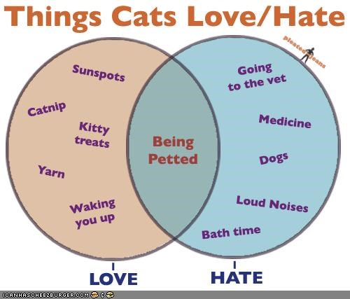 best of the week,charts,graphs,hate,love,petting,venn diagram