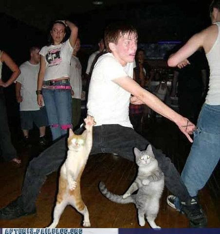 Cats club dance - 4819996928